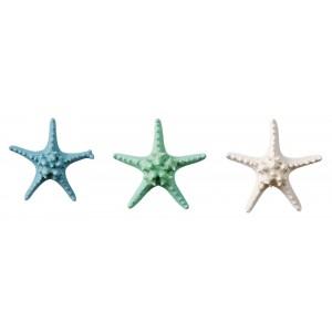 Morská hviezdica prírodná, modrá, alebo zelená 17 cm 33170