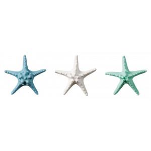 Morská hviezdica prírodná, modrá, alebo zelená 22 cm 33171