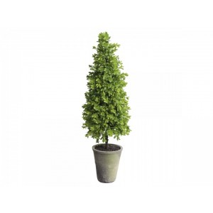 Umelý stromček buxus pyramída v keramickom kvetináči Chic Antique 34813