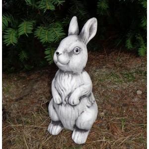 Zajac sediaci 30134