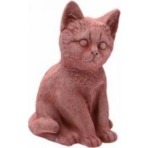 Mačka 19602