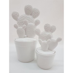 Dóza kaktus keramika biela 24940