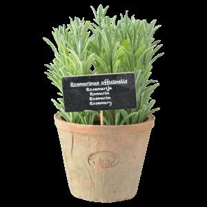 Dekoračný plastový rozmarín s terakotovým kvetináčom Esschert design 34783