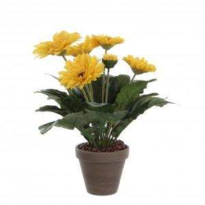 Gerbera žltá v kvetináči 34122