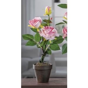 Ruža v štyroch rôznych farbách v hnedom kvetináči 17x6,5x23,5 cm 32914