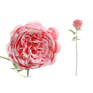 Ružovo biela pivónia na dlhej zelenej stonke s lístkami 70 cm 33796