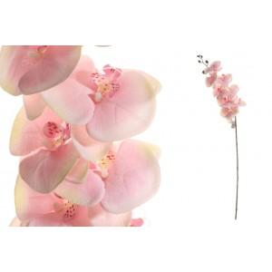 Svetloružové kvietky orchidei na dlhej zelenej stonke 92 cm 33798