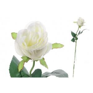Ruža krémová 52 cm 31504